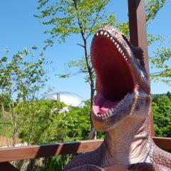 New写真スポット! よーく見ると恐竜博物館も見えるんだ!