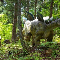 ステゴサウルスの親子遠足