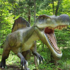 あごも外れる大迫力!! スピノサウルス~